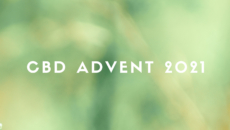 CBDアドベントカレンダー2021完結のご報告と御礼