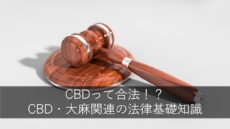 CBDって合法 or 違法!?CBD・大麻関連の法律基礎知識